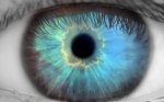 Early Detection of Fabry Disease – The Important Role of Ophthalmology