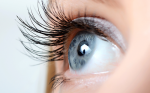 >Early Complications After Penetrating Keratoplasty