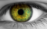 >Intravitreal Ranibizumab for Diabetic Macular Oedema